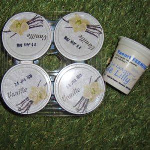 Yaourt à la vanille - La Laiterie de Lily